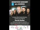 Koncert Davida Kollera pro Acorus v Pražské křižovatce